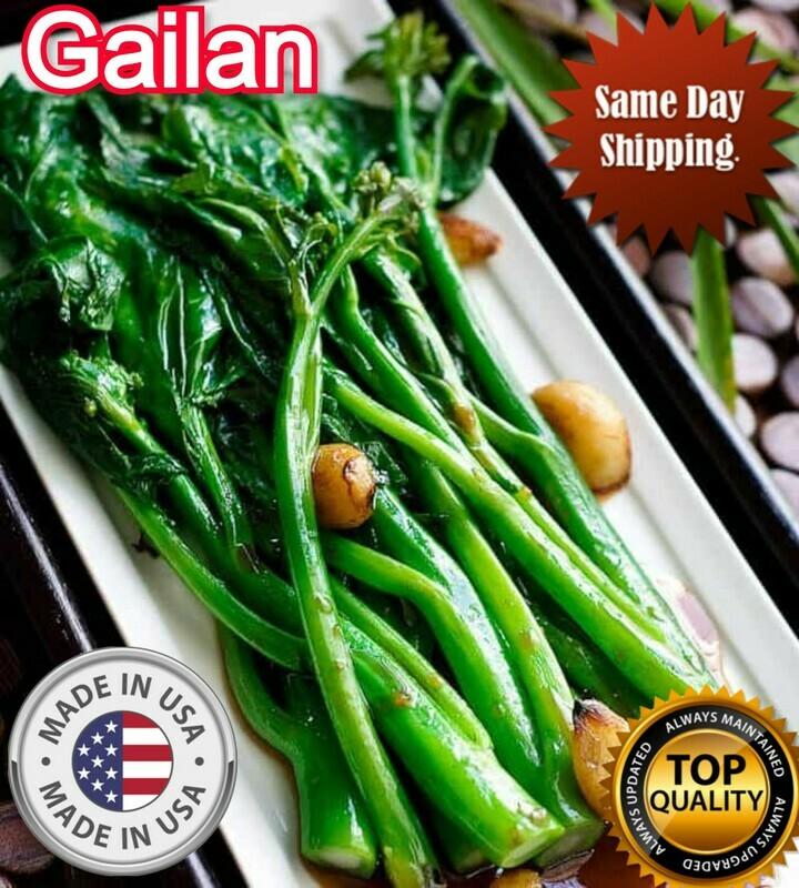 GAILAN seeds Gai Lan KAILAN Seeds