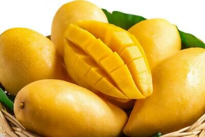 Yellow Mango Tropical Fruit Tree Plant Cay Xoai