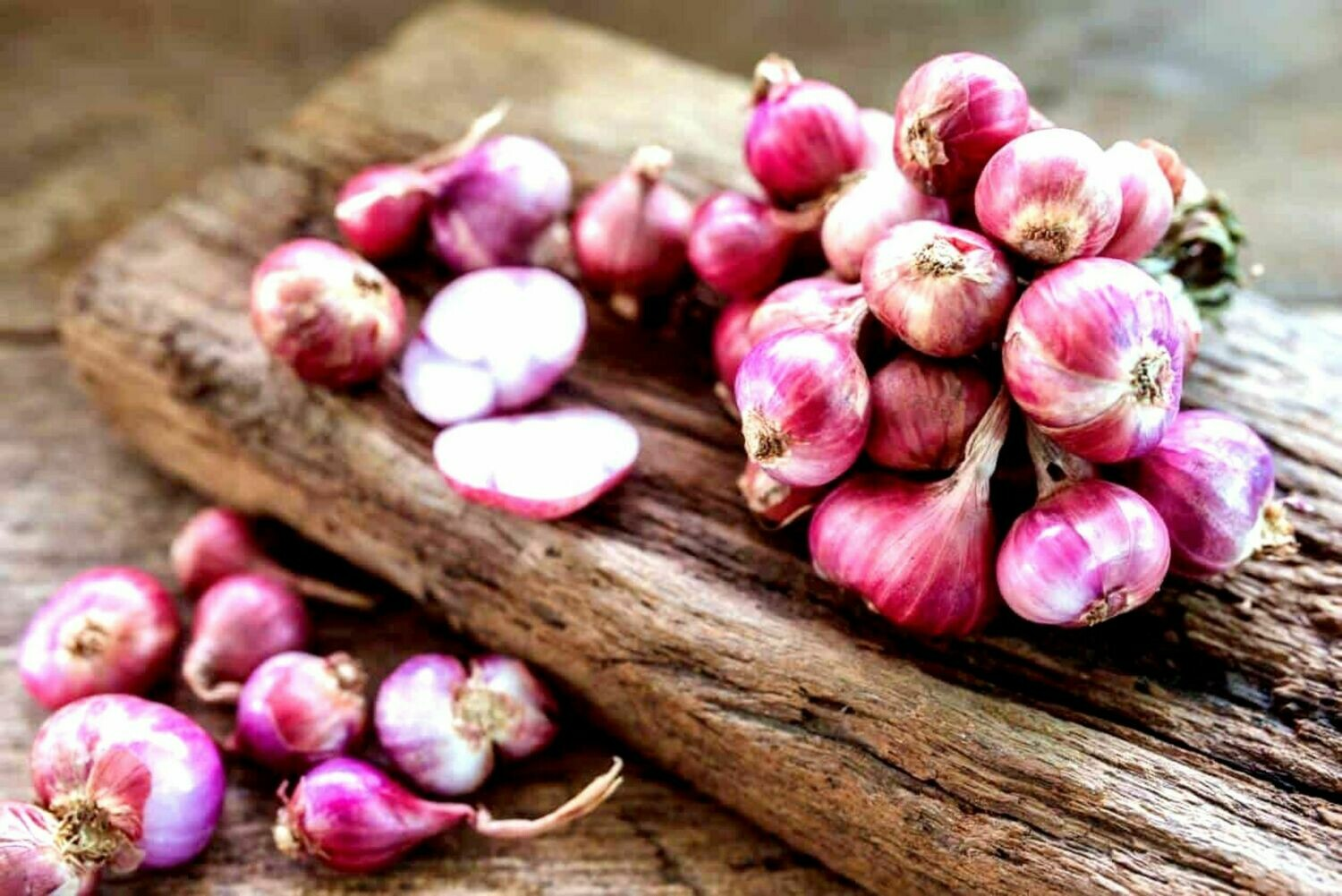 Asian red shallot Hanh Huong onion seeds