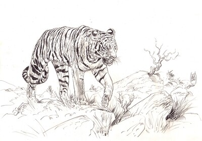 Exemple d'une illustration atelier (Commission) sur papier 250gr en format A4. Avec un ou deux personnages en pieds dans leur décors à votre choix.
