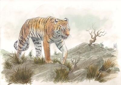 Exemple d'une illustration atelier (Commission) sur papier 250gr en format A3. Avec un ou deux personnages en pieds dans leur décors à votre choix.