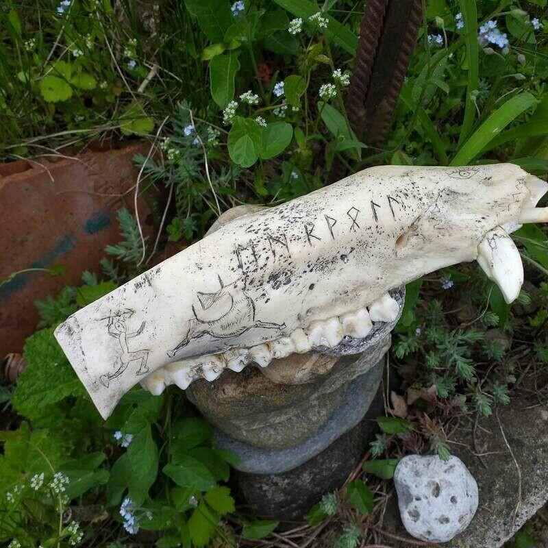 Unterkiefer einer Allgäuer Bache mit Scrimshaw-Motiven