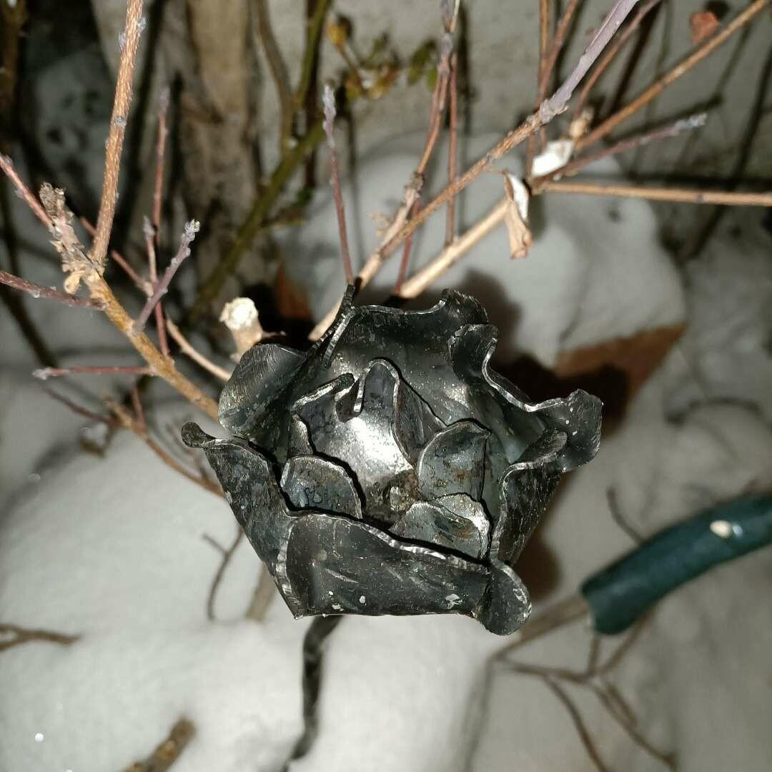 Стилизованная роза из листового железа толщиной 1,5 мм. Чтобы застрять в мягком подземелье.
