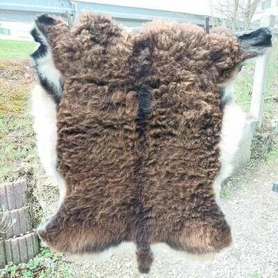 Великий мех от овец Соай из овощного загара Алляу.