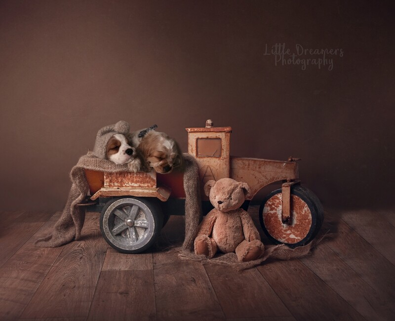 Vintage Truck with Ted Newborn Digital Backdrop