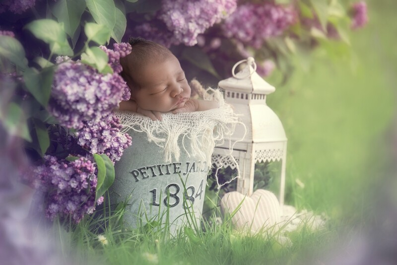 Newborn Digital Backdrop - Boho Baby vintage bucket and lantern with lilac Blossoms