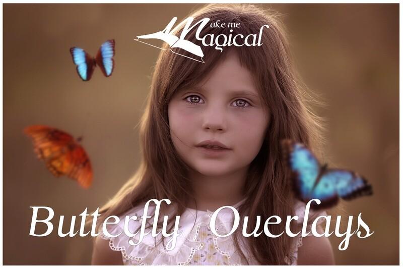 Butterfly Overlays | Digital Butterflies | Butterfly PNG | Butterfly Photos | Photography overlay | Digital Overlay | Butterflies| Butterfly