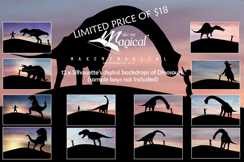 12 x Dinosaur Silhouette Digital Backdrops, Dinosaur digital backgrounds, Makememagical backdrops, Photography backdrops, dinosaurs, t-rex