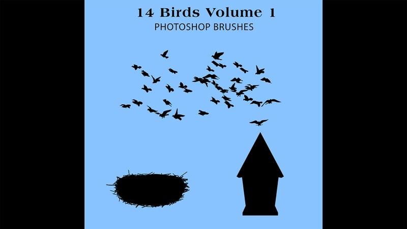 Photoshop Brushes - 14 Bird silhouette Brushes Volume 1