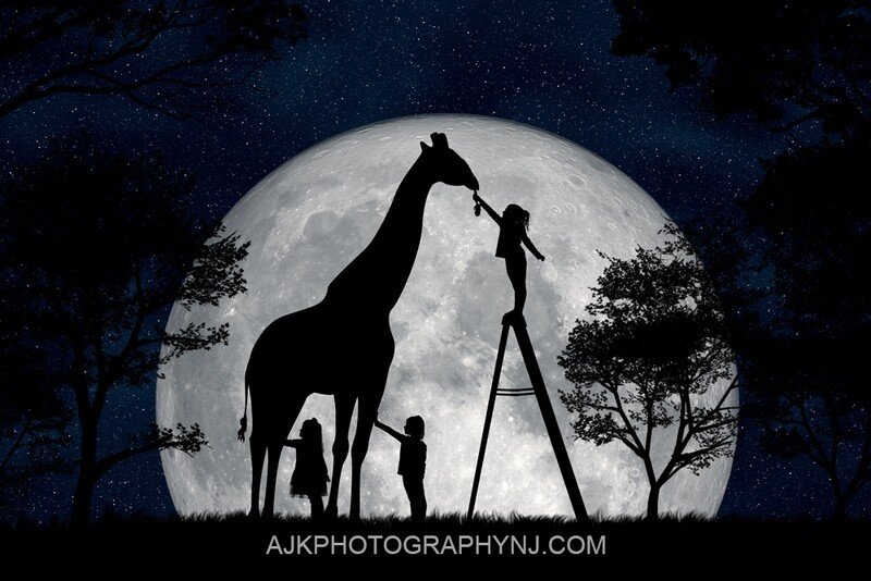 Giraffe silhouette in moon digital backdrop -  digital background by Eric Miele from AJK Photography