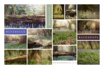 Bluebell woodland digital backdrops - pack of 22 bluebell digital backgrounds