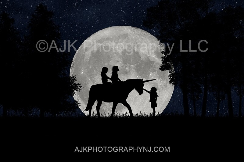 Unicorn silhouette in moon digital backdrop - silhouette digital background by Eric Miele from AJK Photography
