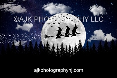 Witch In Moon Silhouette with Bats Digital Backdrop, for 2 larger subjects or 3 smaller subjects, halloween background by Eric Miele from AJK Photography