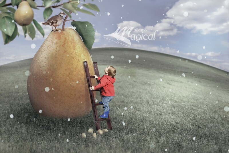 A Partridge in a Pear Tree Digital Backdrop, 12 days of Christmas digital background, Makememagical Xmas Digital Backdrop