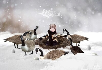 6 Geese are laying digital backdrop, 12 days of Christmas digital background, bird nest in the snow backdrop by makememagical