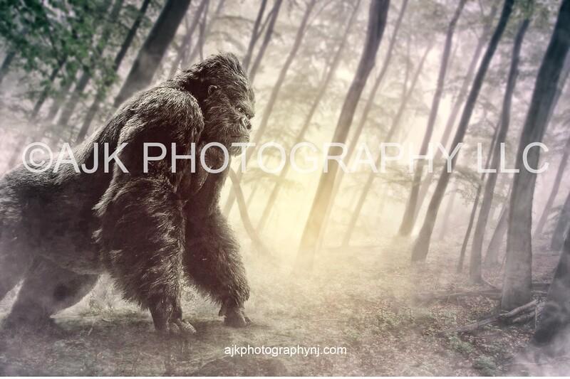 Gorilla in misty forest digital backdrop