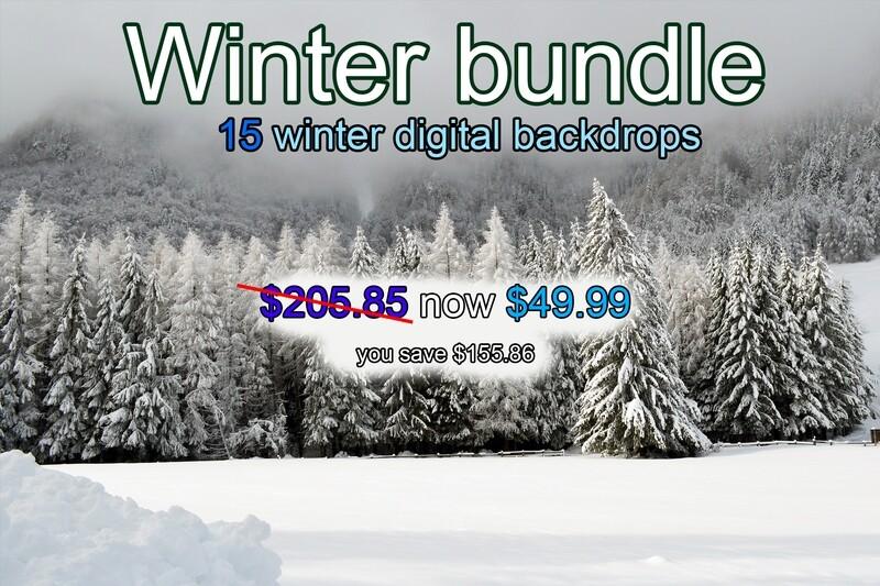 Winter bundle - 15 winter digital backdrops