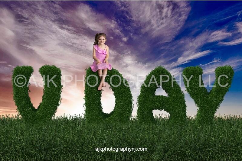 Valentines Day digital background, V day bush letters, field of grass, dark blue sky, digital backdrop