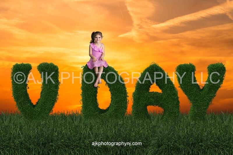 Valentines Day digital background, V day bush letters, field of grass, golden sunset, digital backdrop