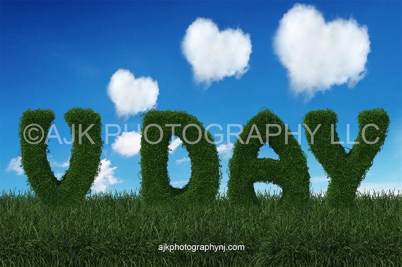 Valentines Day digital background, V day bush letters, field of grass, blue sky, heart shaped clouds, digital backdrop