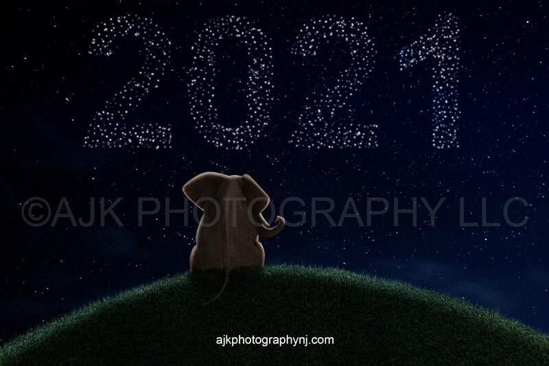 Graduation digital backdrop, 2021 digital background, elephant on grassy hill, stars lit up writing 2021 in night sky, digital background