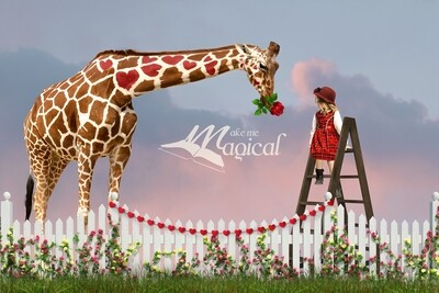 Valentines Day digital backdrop Heart Love shape giraffe digital backdrop with rose in garden with white fence and grass digital background
