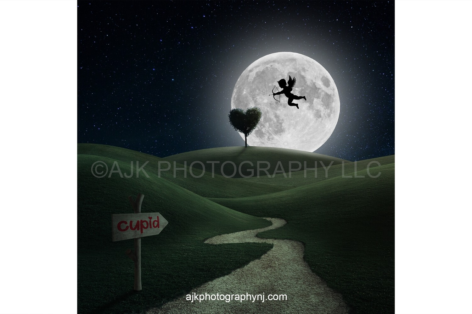 Valentines Day digital background, wood sign showing path to cupid, green field, beautiful sunset, heart shaped tree, digital backdrop