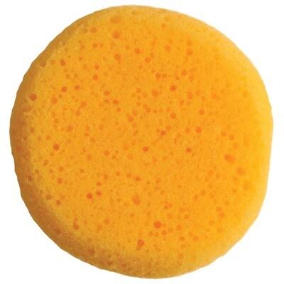 Clean up Sponge