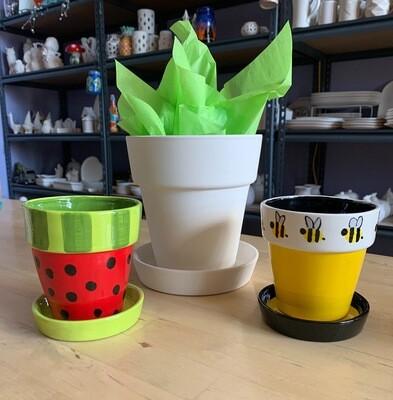 Watermelon Planter Small