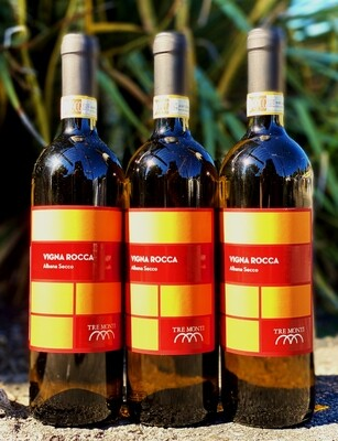 Vigna Rocca Orange