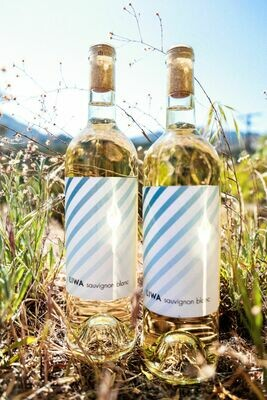 Liwa Sauvignon Blanc