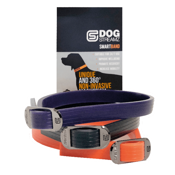 DogStreamZ Magnetic Bands