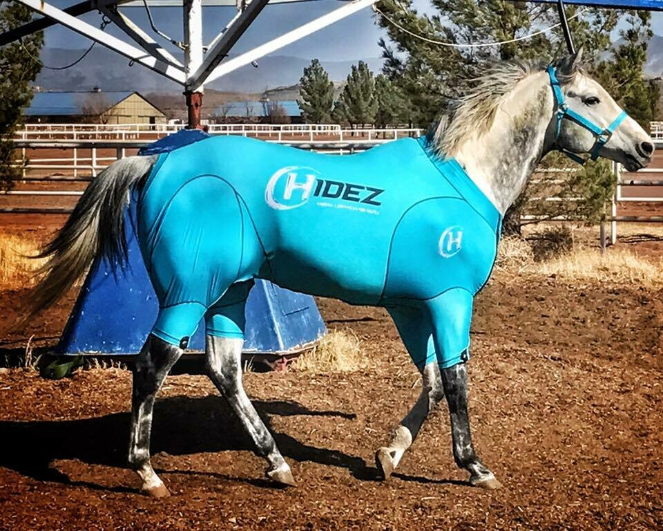 Hidez Active Compression Suit