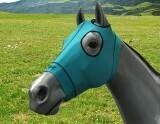 Mask Original Color - Turquoise