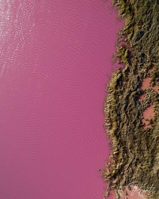 PINK LAKE @ HUTT LAGOON - 2/2