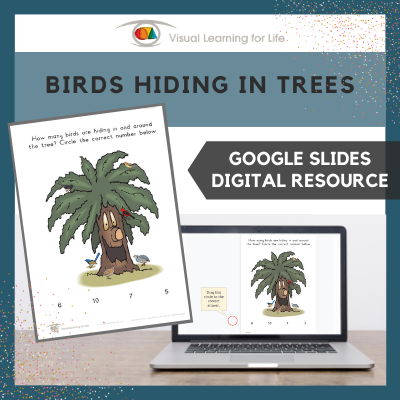 Birds Hiding in Tree (Google Slides)
