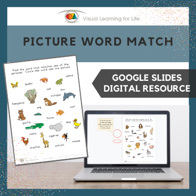 Picture Word Match (Google Slides)