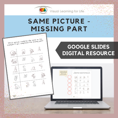 Same Picture – Missing Part (Google Slides)