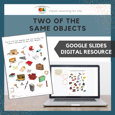Two of the Same Objects (Google Slides)