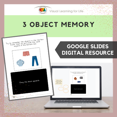 3 Object Memory (Google Slides)