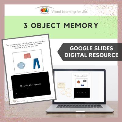 3 Object Memory (Google Slides)