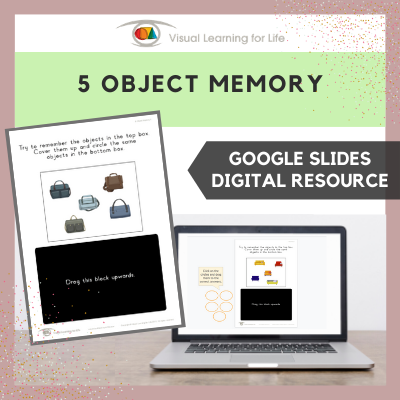 5 Object Memory (Google Slides)