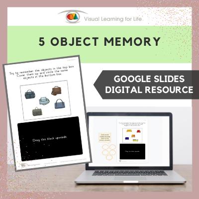 5 Object Memory (Google Slides)