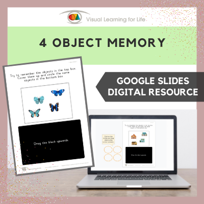 4 Object Memory (Google Slides)