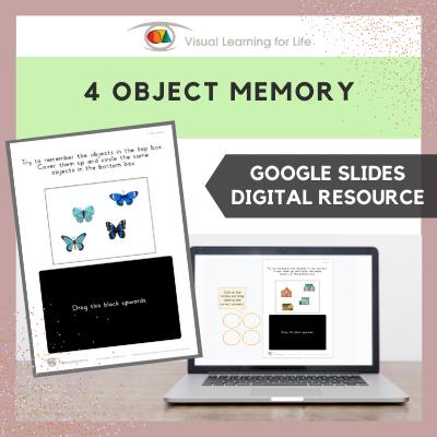 4 Object Memory (Google Slides)