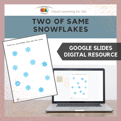 Two of the Same Snowflakes (Google Slides)