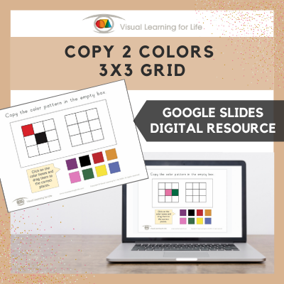 Copy 2 Colours/Colors 3x3 Grid (Google Slides)