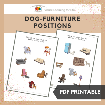 Dogs-Furniture Position