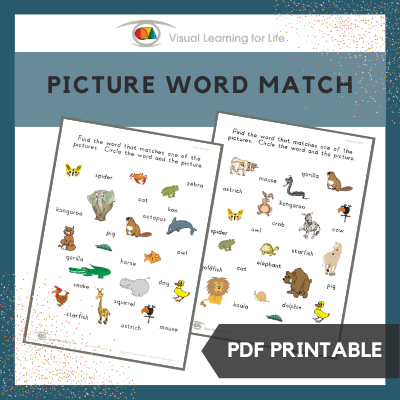 Picture Word Match