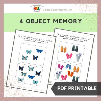 4 Object Memory